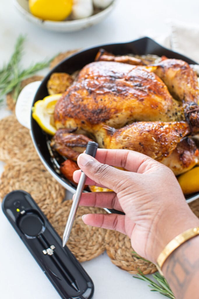 black hand holding meat thermometer